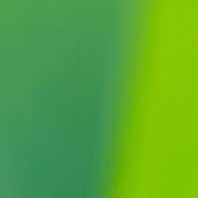 Marihøne øverst på strå, fotokunst veggbilde / plakat av Terje Kolaas
