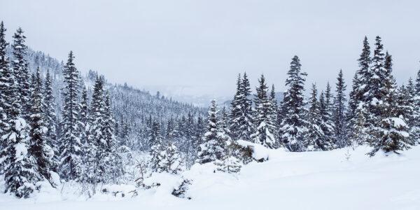 Vinterland, fotokunst veggbilde / plakat av Thor Håkon Ulstad